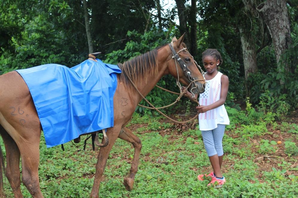 Horseback Riding at the tobacco farm